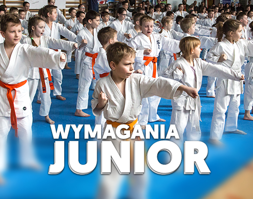 sekai_wymagania_Junior