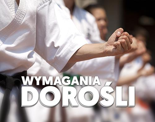 sekai_wymagania_dorosli
