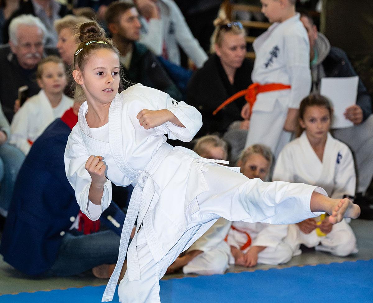 Mistrzostwa Targówka Karate Shinkyokushin – SEKAI 2018 – FILM