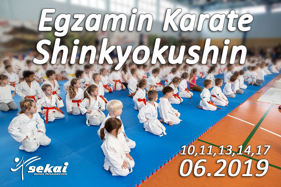 Egzamin Karate Shinkyokushin UKS SEKAI 2019