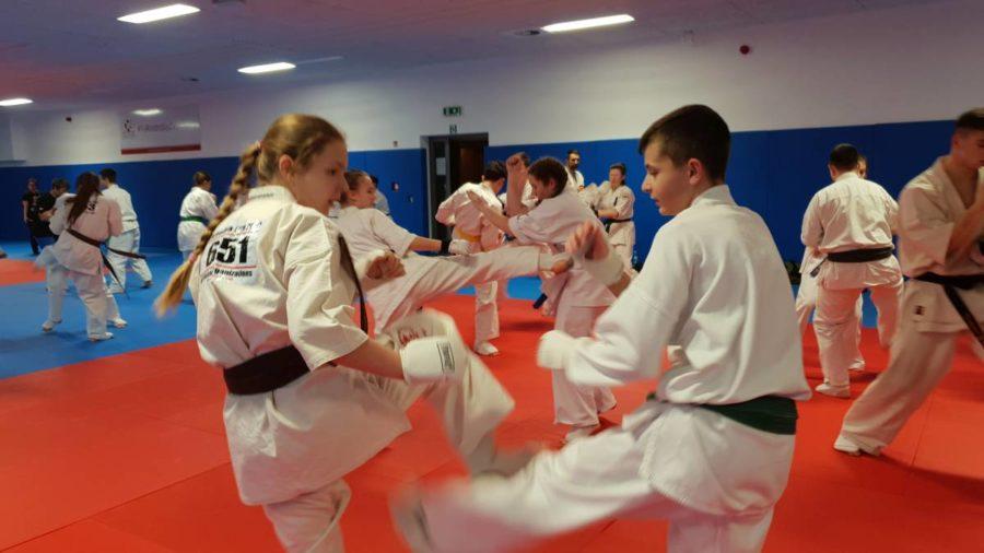 Zawodniczy Obóz Karate Shinkyokushin Sekai – III turnus